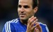 Fabregas has impressed for Chelsea
